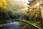 Top 5 địa điểm thiên nhiên không thể bỏ qua khi đến Đà Lạt !