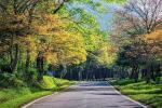 Hòa mình vào phong cảnh thiên nhiên cùng 7 vườn quốc gia đẹp nhất Việt Nam