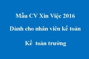 Mẫu CV dành cho nhân viên kế toán - Kế  toán trưởng