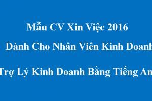 Mẫu CV Kinh Doanh - Trợ Lý Kinh Doanh Bằng Tiếng Anh Mới Nhất 2016