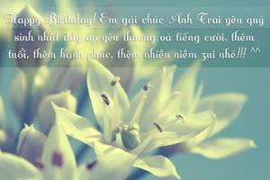 10 lời chúc kèm hình ảnh chúc mừng sinh nhật anh trai cực chất và ý nghĩa