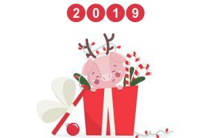Chia sẻ vector, background con heo đón giáng sinh và tết 2019 cực chất