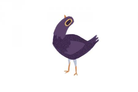 Con chim nâu lắc đầu gật gù liên tục  tên là gì và ý nghĩa của comment bình luận này?