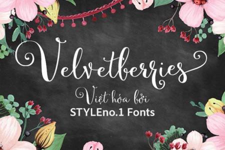 Font chữ viêt tay Velvetberries Việt hóa
