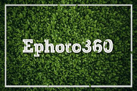 Tạo ảnh  status, typography, quote online cho facebook trên nền cỏ xanh online cực  dễ