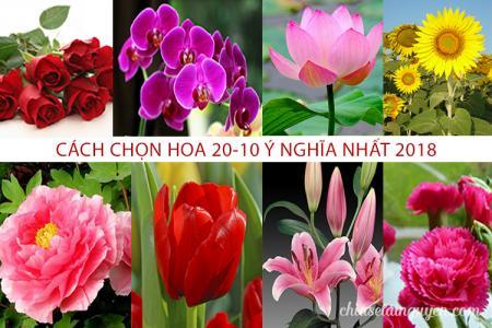 Cách chọn hoa 20/10 đẹp và ý nghĩa nhất cho những người phụ nữ thân yêu