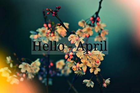 Mời tải về bộ ảnh bìa, cover facebook tháng 4 - Hello April đẹp nhất 2019