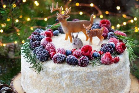 Top 20 mẫu bánh gato, bánh kem giáng sinh mang Noel đến gần hơn bên bạn