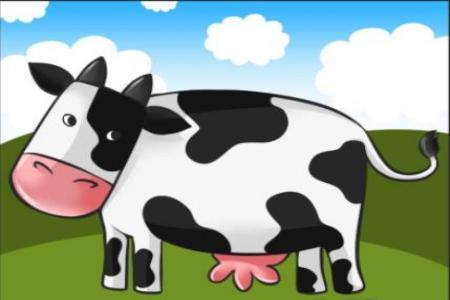 Hãy giết ngay con bò quý giá của bạn!